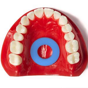 mewing appliance in dental model